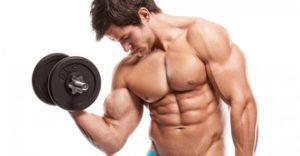 La Costruzione Del Muscolo Consigli Di Allenamento Per Principianti