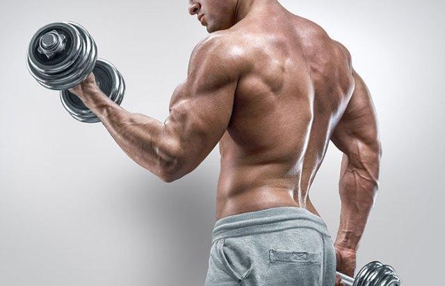 Come Si Fa A Muscle Pro Xtreme Lavoro? - Come si usa? – controindicazioni – effetti collaterali – fa male?