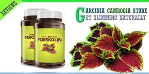 Pure Forskolin Slim – commenti – ingredienti - erboristeria – come si usa – composizione