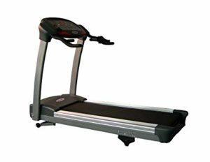 Fitnex Muscle+, opinioni, recensioni, forum, commenti