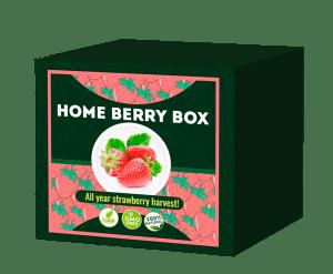 Home Berry Box, prezzo, funziona, recensioni, opinioni, forum, Italia 2020