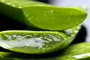 Aloe PhytoComplex, come si usa, ingredienti, composizione, funziona